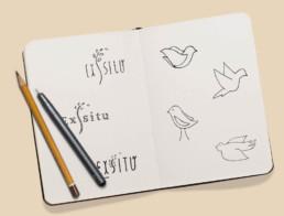 ExSitu Logo Drafts